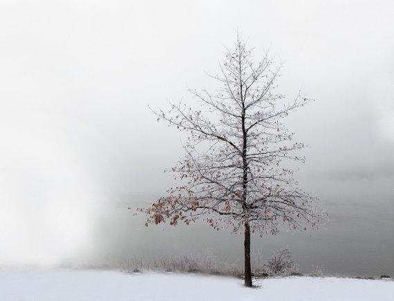 Black Winter 18 Background